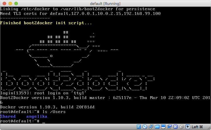 A screen from Docker default machine
